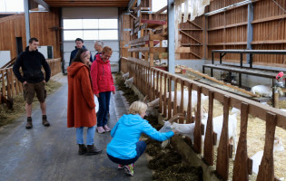 Herzstück ist der moderne, artgerecht ausgebaute Ziegenstall