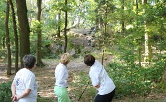 Am Bayerischen Untermain ist die Suche nach vermissten Personen in der Fläche (Wald und Feld) der häufigste Einsatzanlass.