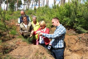 Das extra angelegte Bodenprofil zeigt die Dicke der Sandbodenschicht im Forstrevier Untermainebene