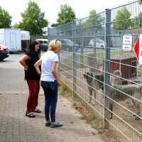 Martina Fehlner beim Informationsbesuch des Aschaffenburger Tierheims
